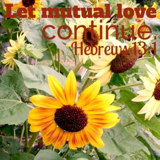 Blog Photo Scripture 1