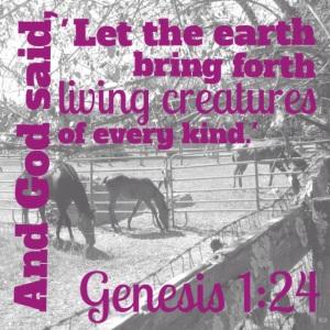 Blog Photo Scripture 6